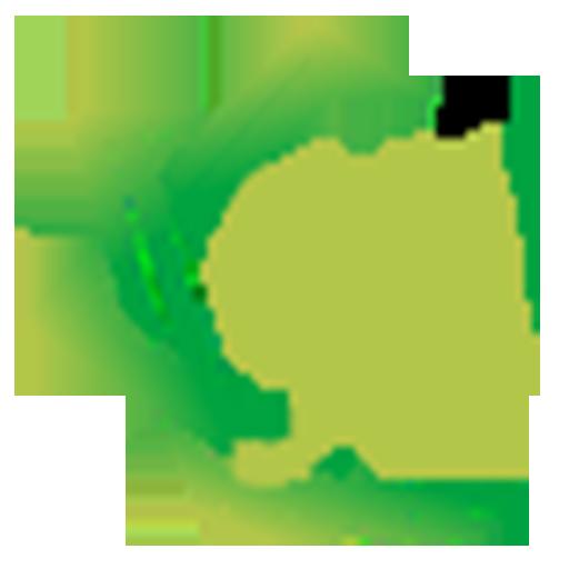 92 Web Studios
